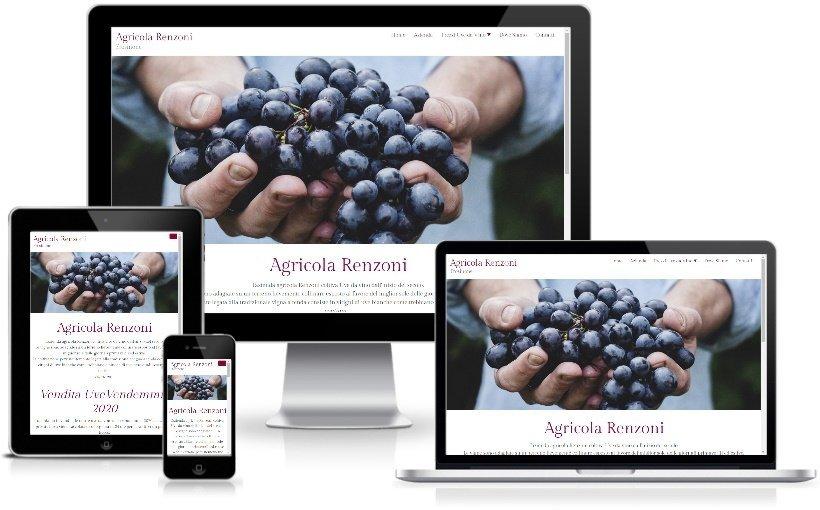 Anteprima Sito Web Responsive agricolarenzoni.it